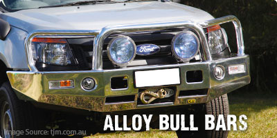Page Bull Bars Alloy