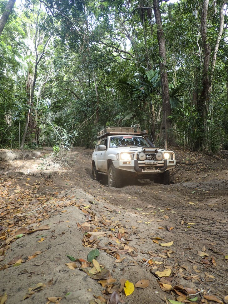 Roma Flats 4Wd Rainforest